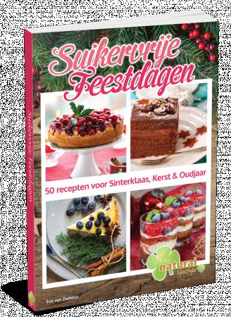 Suikervrije Feestdagen Boek